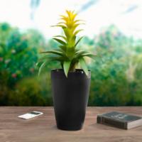 外出时的好助手:Parrot 派诺特 推出 Parrot Pot 自动浇水智能花盆