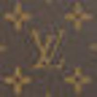 Pochette Felicie 手袋  Monogram - Pochette Felicie 手袋 | 路易威登