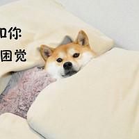 《张大妈百科全书》 篇五:冬日正好眠,从一款舒适的枕头开始【征稿进行中】