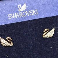 耳畔的天鹅湖 — SWAROVSKI 施华洛世奇 天鹅耳钉(玫瑰金)晒单