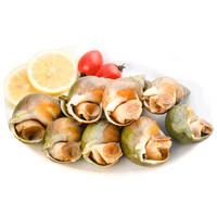 首鲜道加拿大翡翠螺500g冷冻海鲜水产大海螺