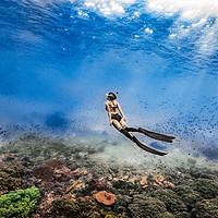 海南三亚一日游加井岛浮潜VIP潜水纯玩户外深潜海钓亚龙湾百福岛
