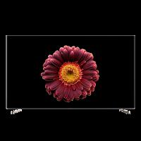 创维(SKYWORTH)55S755英寸超薄像素控光智能声控OLED电视黑色