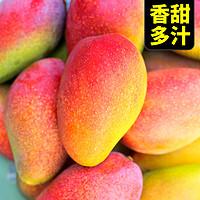 广西贵妃芒新鲜水果应当季整箱包邮正宗百色大芒果新的甜心芒