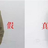 战术类服装购买攻略 篇一:一件连校长差点都上当的 ARC'TERYX 始祖鸟 Fusion jacket 棉服