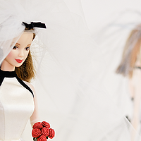 生日快乐,我的女神——Barbie Collector 芭比珍藏版 2年收藏小结