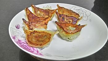 我的美食系列 篇五:水煎饺之大葱饺子
