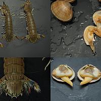 老纪中餐厨房 篇八:又双叒叕到一年海鲜季,老纪教你如何辨别新鲜的皮皮虾和黄蚬子