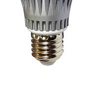 东芝日规大战海内网红—6款LED灯泡对比测得结果