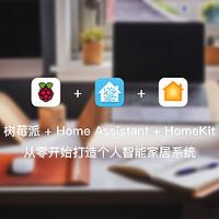 树莓派 + Home Assistant + HomeKit 从零开始打造个人智能家居系统 篇八:Hass.io 插件推荐
