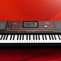 #晒单大赛#KORG科音最新PA700电子琴(编曲键盘)评测 附试弹视频