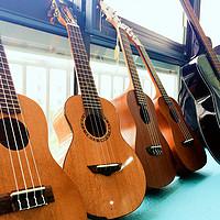 你就是那海滩上的乌克丽丽,夏威夷吉他和小吉他是什么鬼?