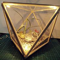 一次偶然的手工活—自带光效的花盆