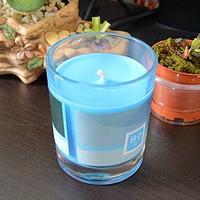 张大妈赠送的礼物:气味图书馆 香薰蜡烛 开箱体验