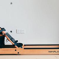 闲置起来不占地,家用健身器材的进化—WHALE QUICK 鲸锐智能划船机开箱体验