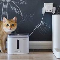 麻薯评测 篇一:无人看顾,独自一猫也能好好吃饭——小佩智能喂食器mini评测