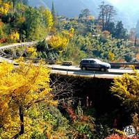 每日一景点:这儿的秋景神似喀纳斯,就在苏、杭、沪边上,最美公路串起N个超赞景点!