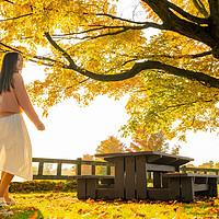 枫叶国之行 篇二:情迷魁北克,加拿大东部自驾赏枫指南