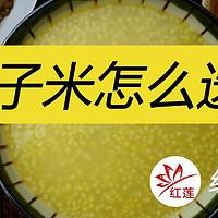 【红莲烈火】居家男人的剁手记录 篇十:坐月子、给宝宝加辅食,黄小米怎么选?