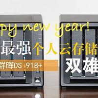 男人的生产力工具 篇九十六:打造最强个人云存储系统:群晖DS 918+双雄会(上)