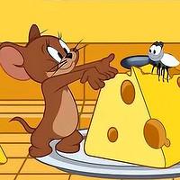 奶酪—威士忌小酌的必备良品