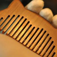 森森的大草原 篇二十八:防脱发,从每日的梳头开始