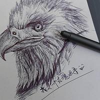 所写即所得, 我画了只老鹰-36记智能手写板综合体验