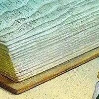 乐妈育儿 篇十三:618选书季,2亿家长常见的选书误区有哪些?儿童心理咨询师教你精明规避!