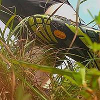 追逐原始的脚步--Vibram KMD EVO五指鞋体验