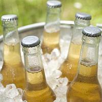 夏日酒一杯,喝完再去拥抱这个世界