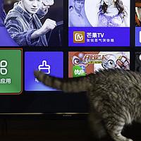 开心带回康佳测评-两千元搬回一台55寸4K高清大存储的AI智能电视?
