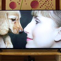 千元档能买到的55寸电视会不会很差?本文多个维度体验乐视Y55C,带你一睹真相!