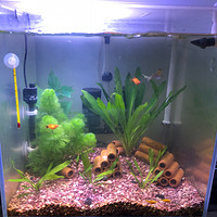 达文西之生活系列 篇十二:鱼缸灯夹碎了怎么办?达文西之鱼缸led照明灯修复,一个草缸的diy过程