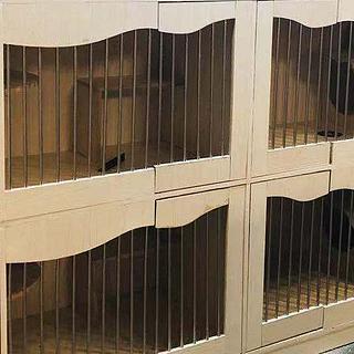 猫柜太贵!跟着少女亲手做一个专属猫柜吧