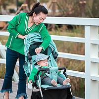 宝妈亲测:宝宝0-4岁,一台QBORN秒秒收婴儿推车全搞定