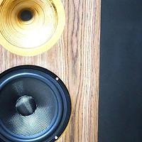 音箱 篇十二:台湾雷尔斯Classics 8EX号角高音两分频音箱:艺术和修养并存