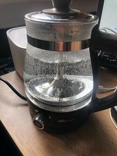 垃圾佬的置办的小年货-小熊煮茶器