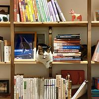 一起来做一个实用又漂亮的书架吧!