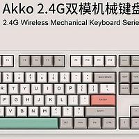 Akko 9009系列 2.4G双模机械键盘避坑指南