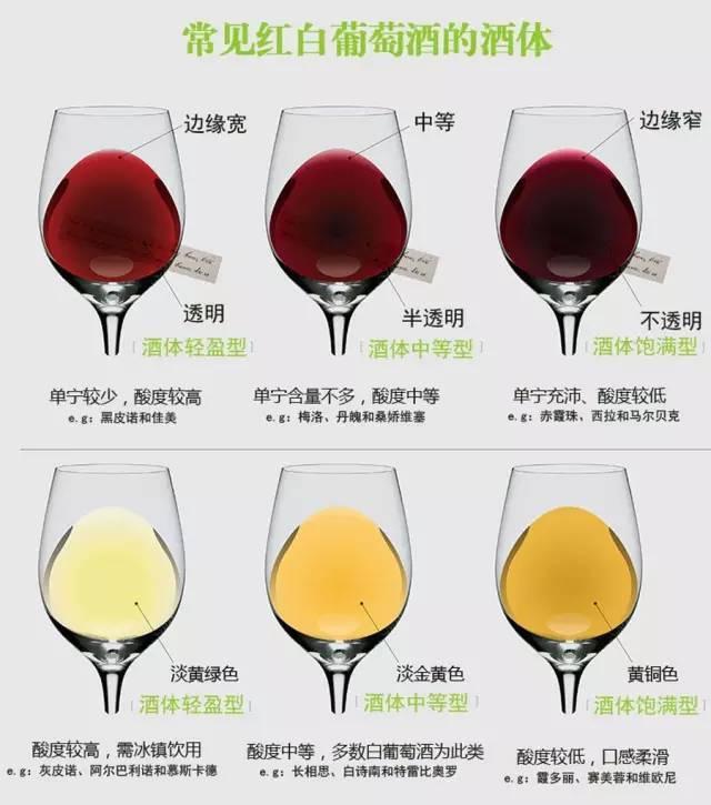 这可能是史上最全的葡萄酒分类,建议收藏