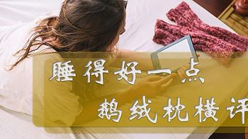 什么鹅绒枕值得买?四款千元级鹅绒枕横评给你答案!