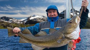 要想上鱼选对鱼竿很关键  新手&进阶皆可盘 高性价比钓竿入手推荐