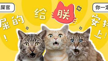 新手养猫指南——这12款最高不超9.9的猫玩具快给主子安排吧!