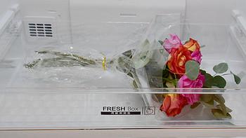 玫瑰33天保鲜-MeiLing/美菱 BCD-452WPU9CA 一级变频M鲜生 黛蓝灰冰箱