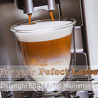 Delonghi ESAM6600 - 6年全自动咖啡机DIY拆机维修的经验分享