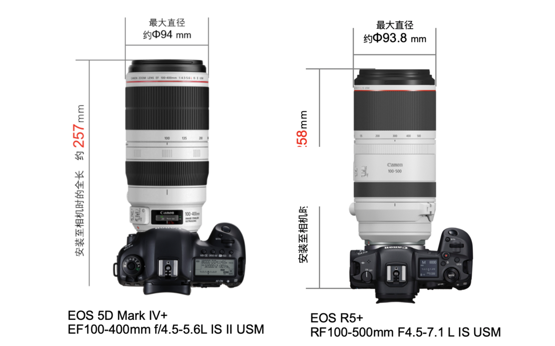 RF卡口也有演唱会神器,佳能发布L级RF超远摄变焦镜头 RF100-500mm F4.5-7.1 L IS USM