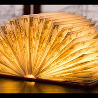 故宫文化越来越神了!人工裱糊的海错图书本灯,太惊艳了!