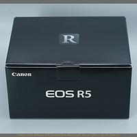 佳能EOS R5深度使用感受|4K120样片,宽容度,高感,防抖,转接