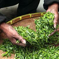 汇总:值得一喝的好茶推荐,6大类茶,帮你总结了12款代表