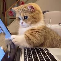 爷青回!《轩辕剑》系列更新正作,来看怎样的笔记本电脑能玩